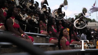 Alabama State University Poison Stingettes 2012!