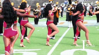 "Halftime Feature: Stingettes 2012 ""Lady Marmalade"" 