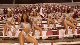 Cold Blood – Alabama A&M Marching Maroon and White (2014)