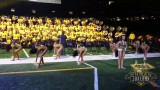 "Southern University Human Jukebox ""No Flex Zone"" @ Bayou Classic BOTB 2014"