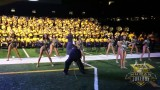 "Southern University Human Jukebox ""Just The Way You Are"" @ Bayou Classic BOTB 2014"