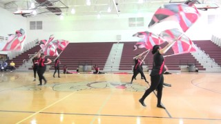 WCHS Platinum Ice Dancers/Flags 2015